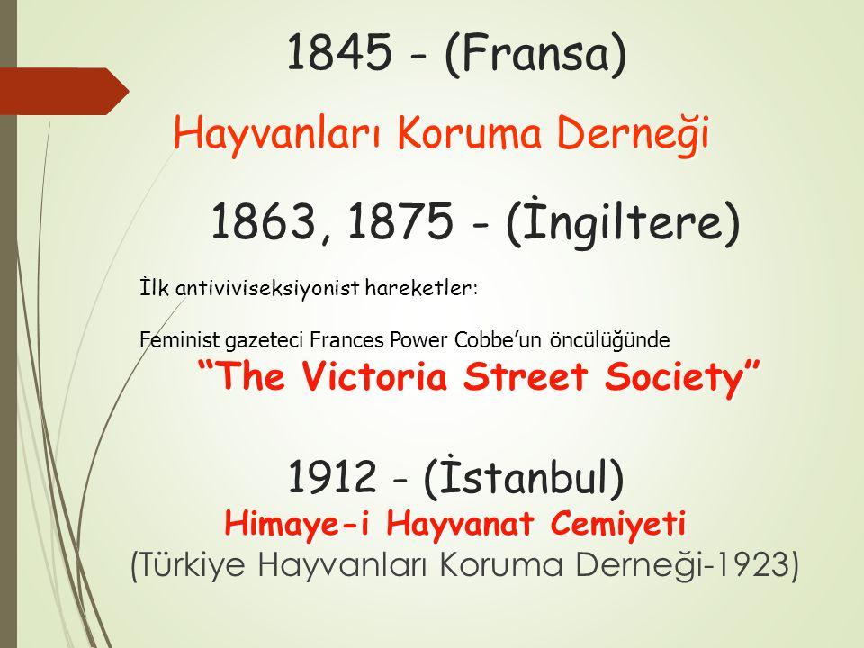 The Victoria Street Society