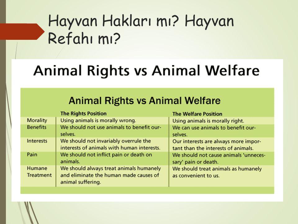 Hayvan Hakları mı Hayvan Refahı mı