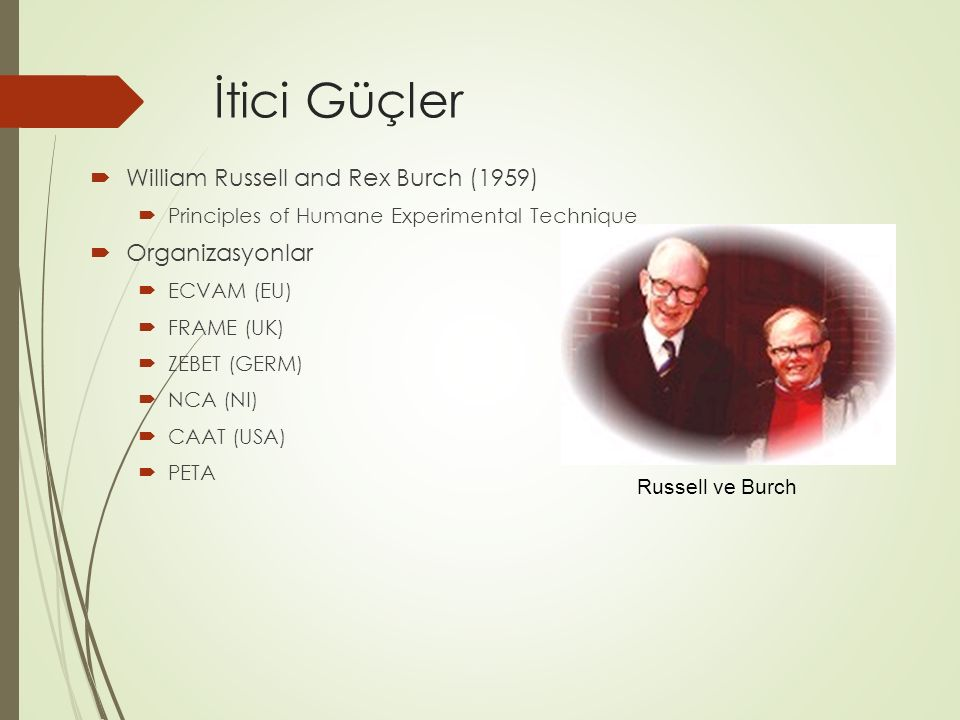 İtici Güçler William Russell and Rex Burch (1959) Organizasyonlar