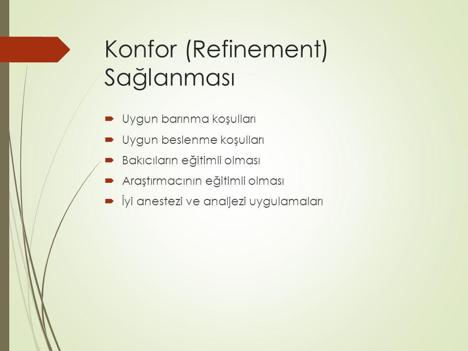 Konfor (Refinement) Sağlanması