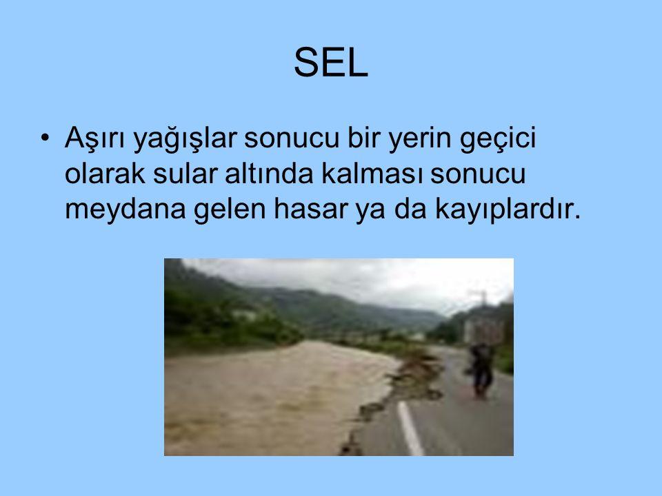 SEL Aşırı yağışlar sonucu bir yerin geçici olarak sular altında kalması sonucu meydana gelen hasar ya da kayıplardır.