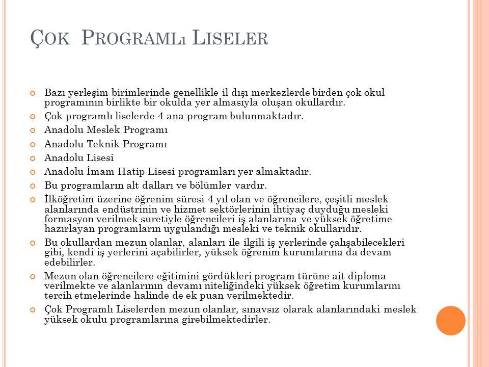 Çok Programlı Liseler