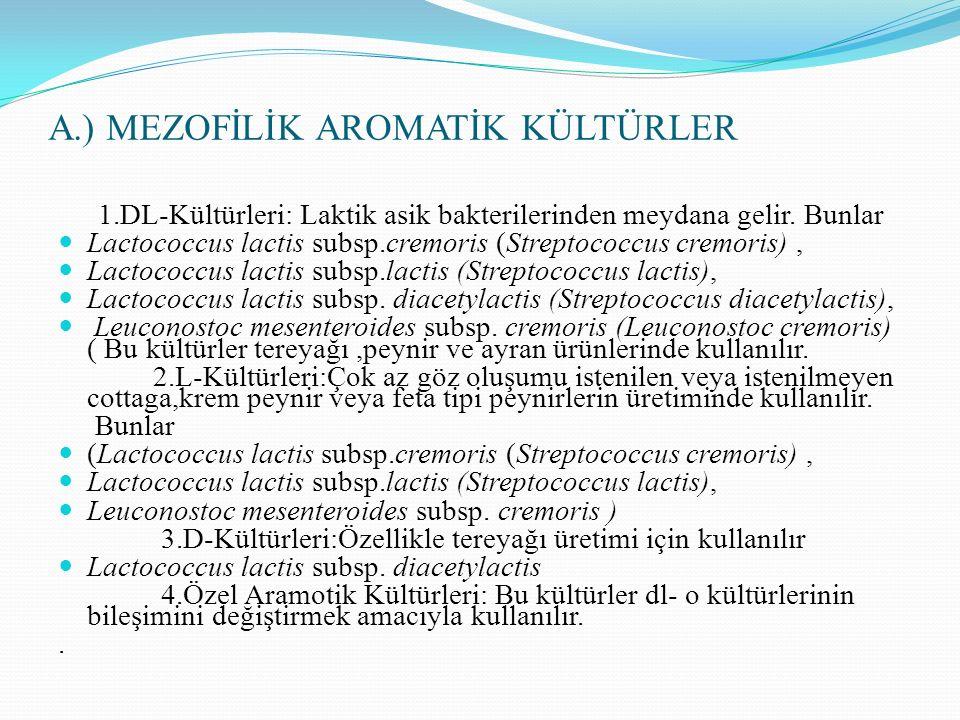 A.) MEZOFİLİK AROMATİK KÜLTÜRLER