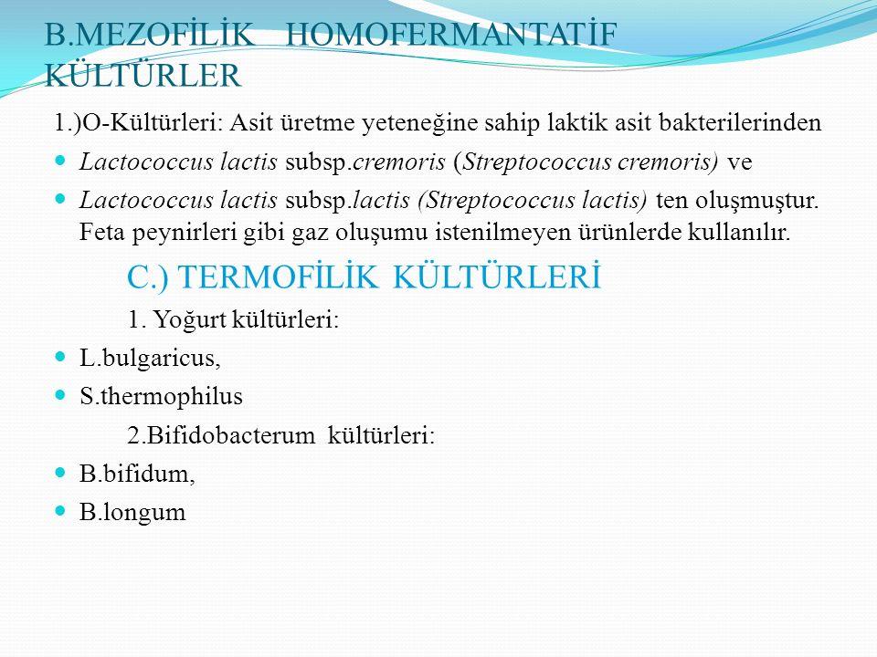 B.MEZOFİLİK HOMOFERMANTATİF KÜLTÜRLER