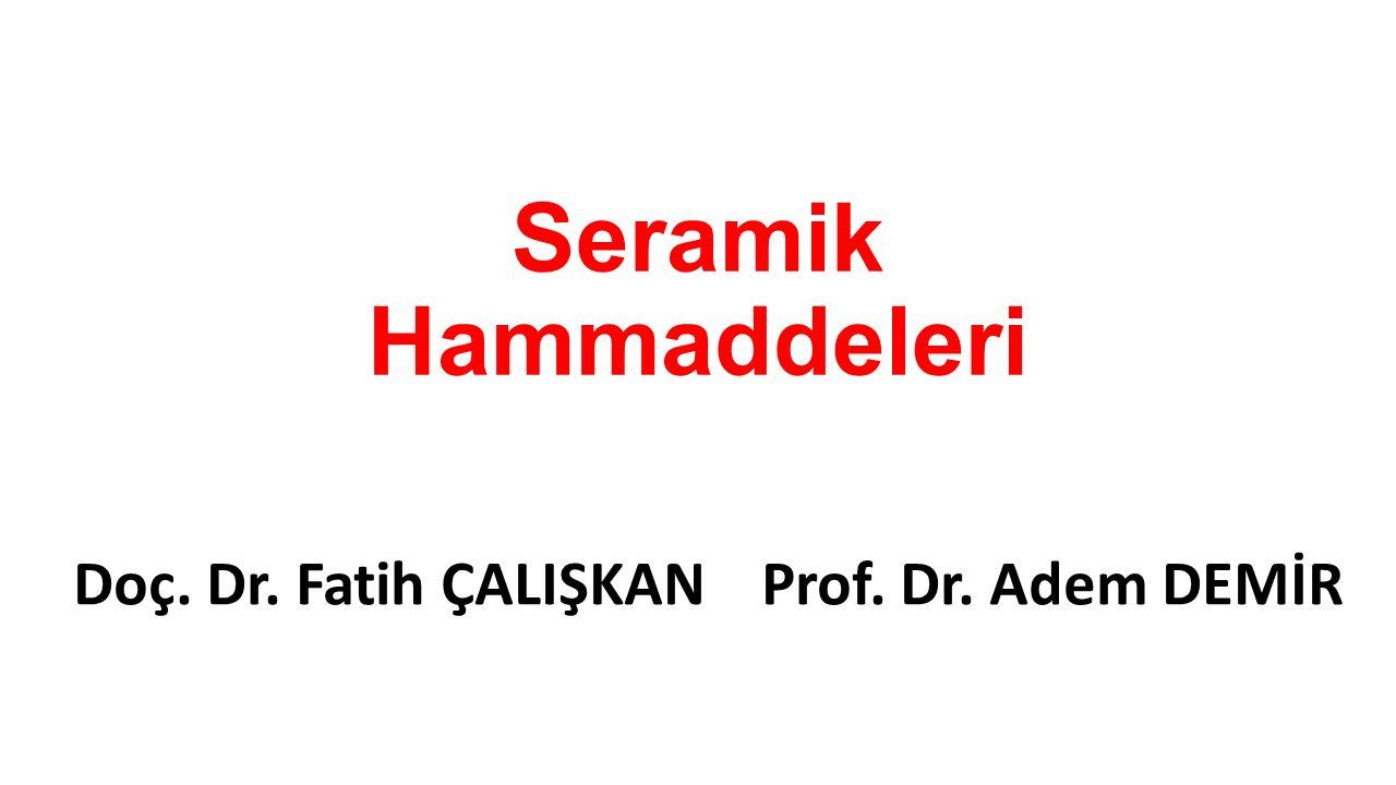 Doç. Dr. Fatih ÇALIŞKAN Prof. Dr. Adem DEMİR