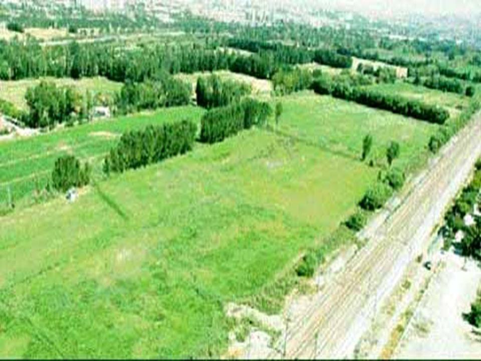 www.arkitera.com/news/2007/05/18/aoc.jpg