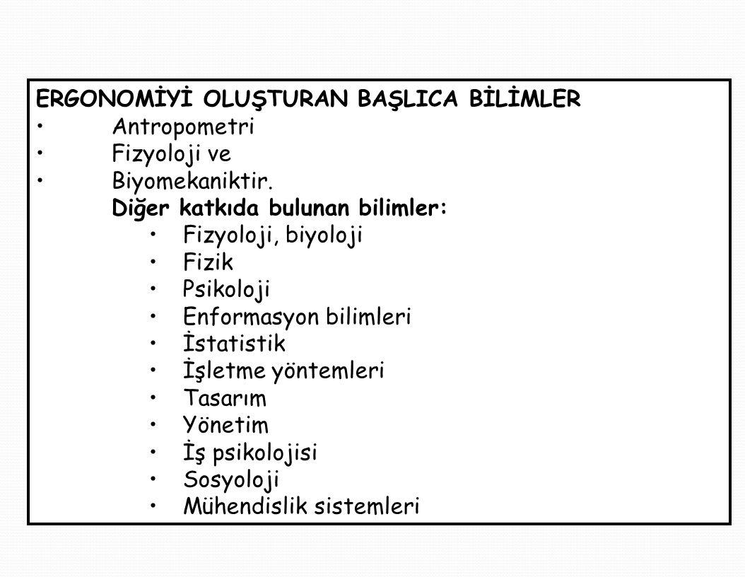 ERGONOMİYİ OLUŞTURAN BAŞLICA BİLİMLER Antropometri Fizyoloji ve