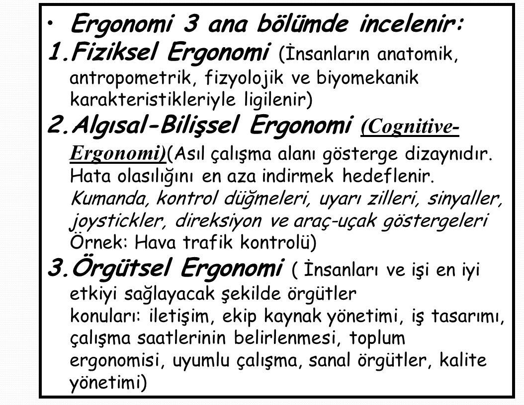 Ergonomi 3 ana bölümde incelenir: