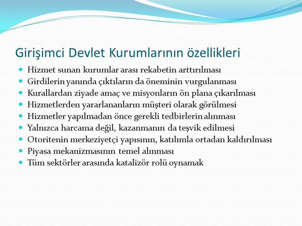 Girişimci Devlet Kurumlarının özellikleri