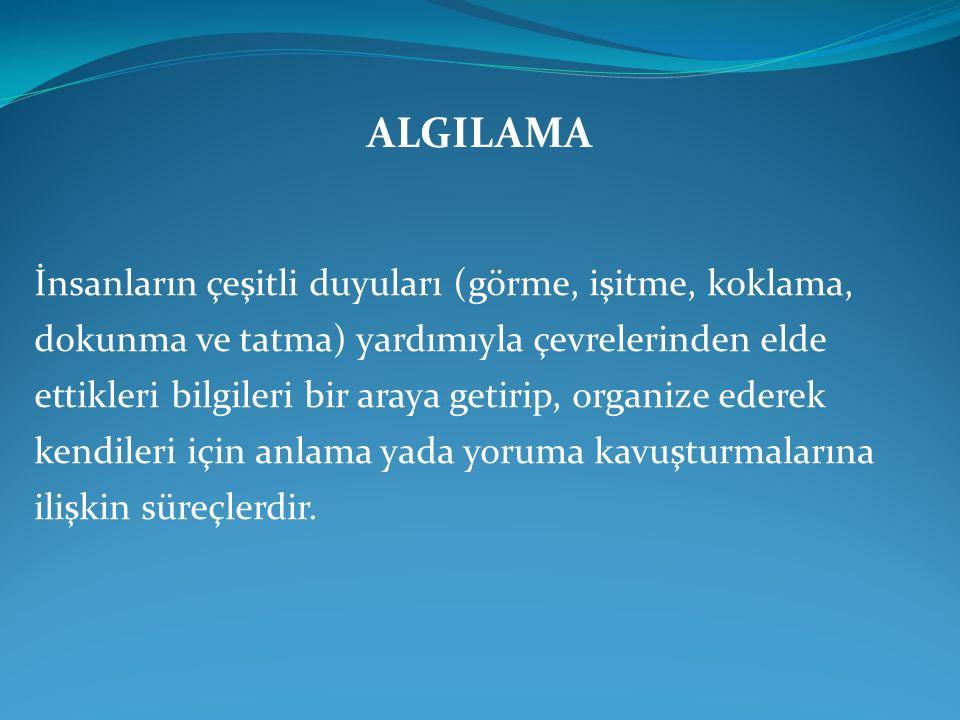 ALGILAMA