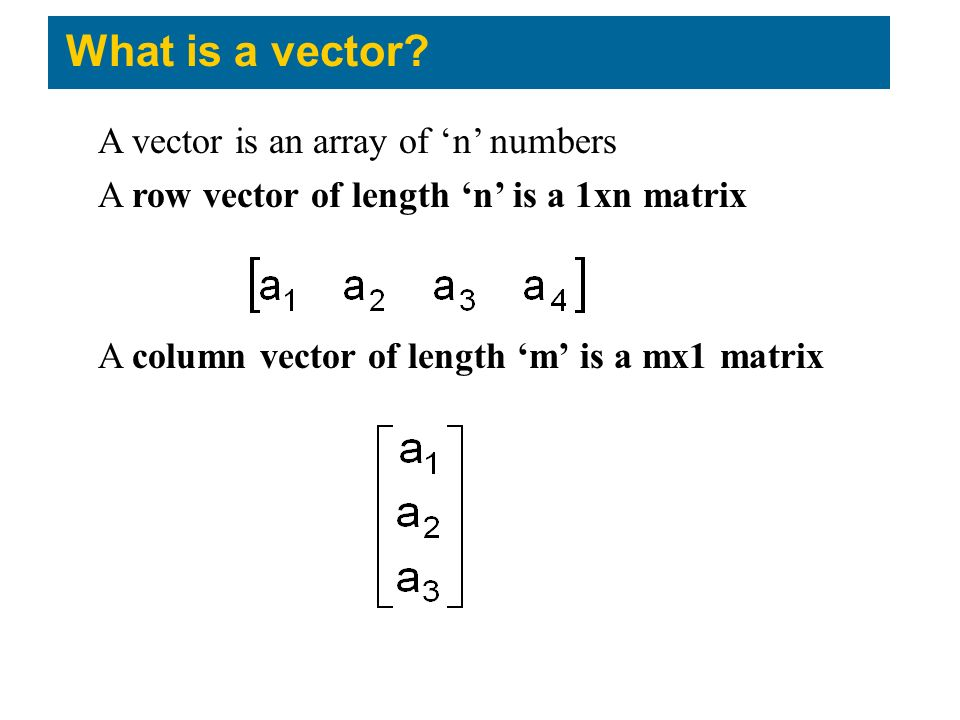 What is a vector A vector is an array of 'n' numbers