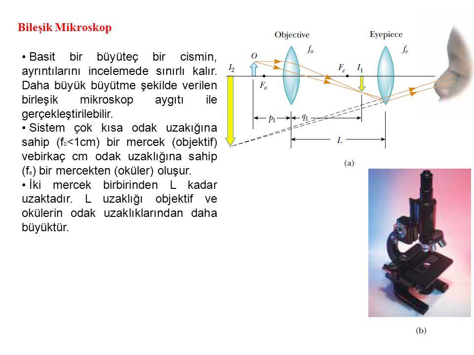 Bileşik Mikroskop