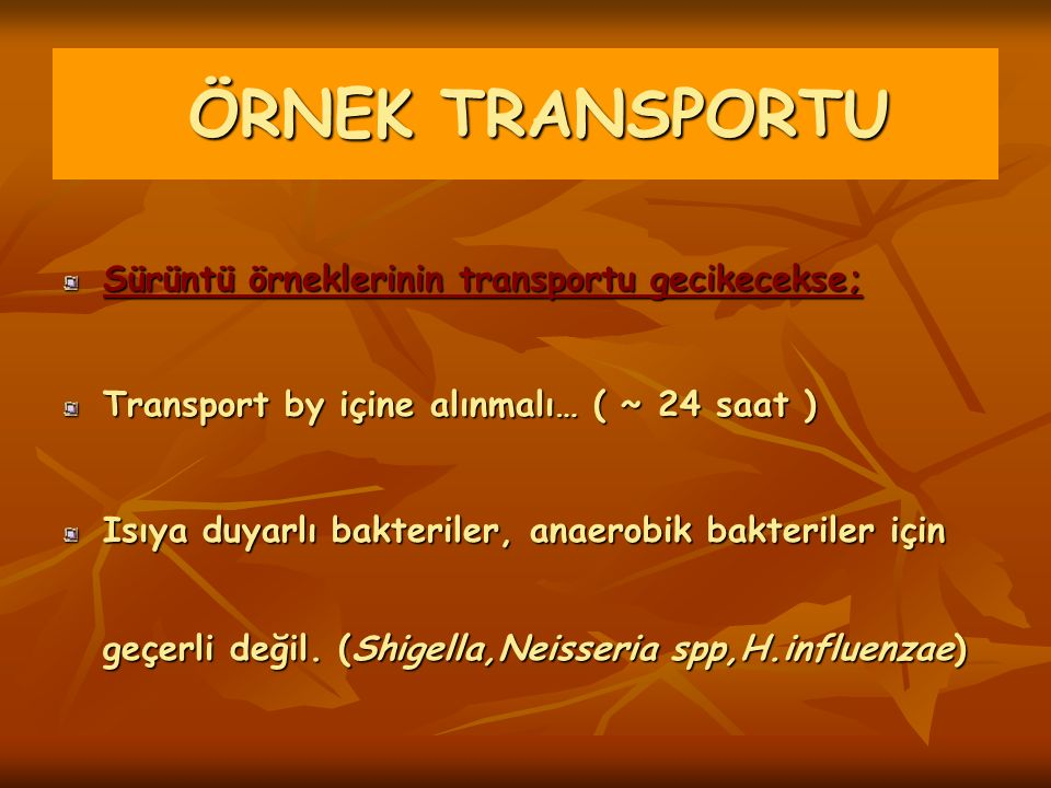 ÖRNEK TRANSPORTU Sürüntü örneklerinin transportu gecikecekse;