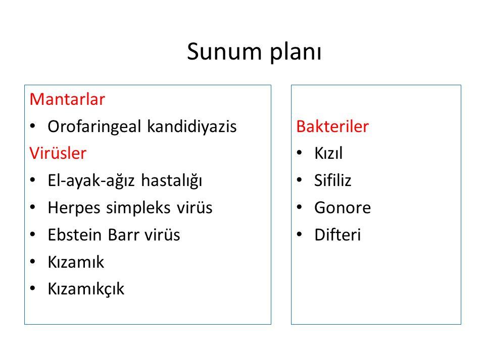 Sunum planı Mantarlar Orofaringeal kandidiyazis Virüsler