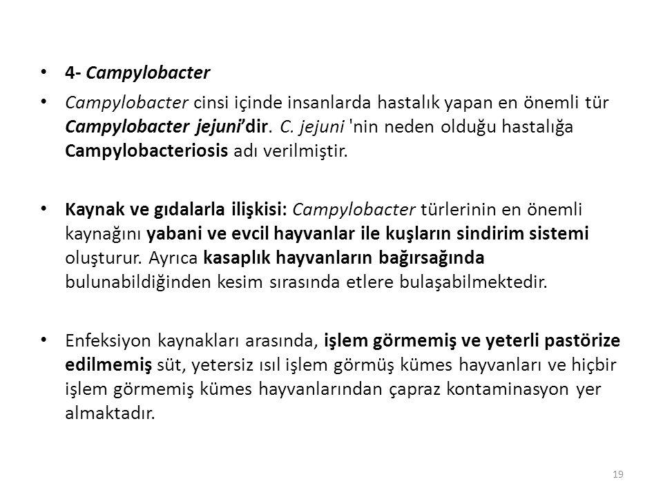 4- Campylobacter