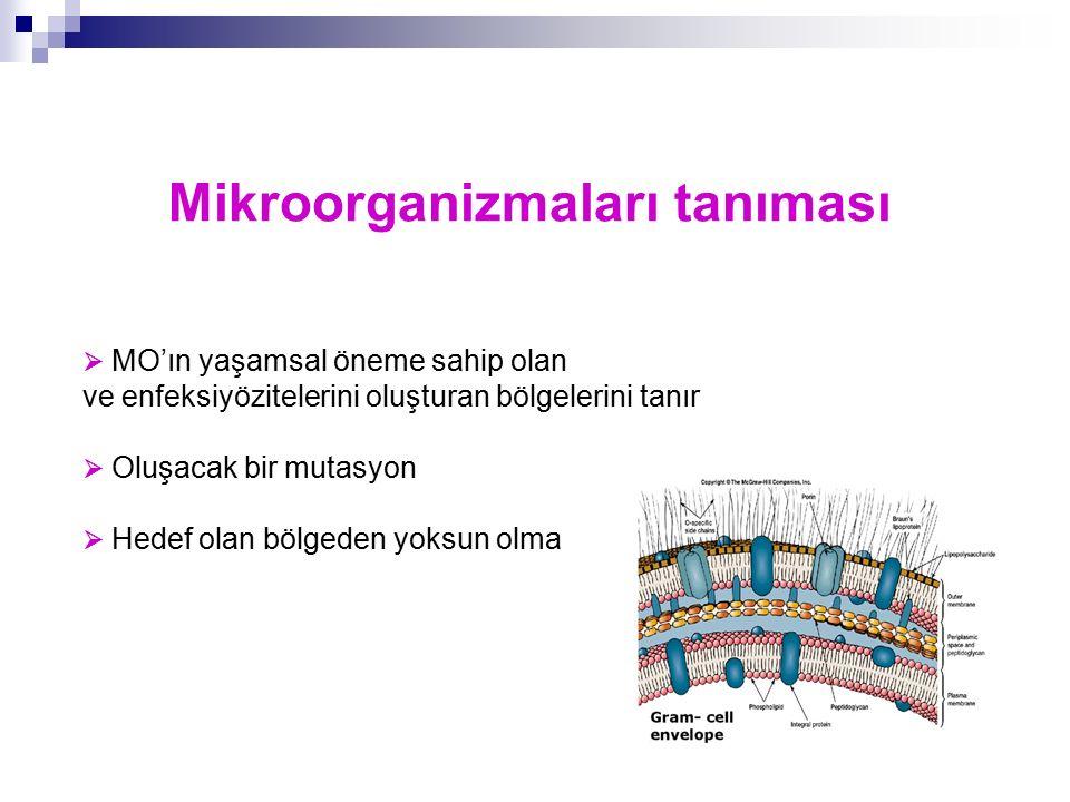 Mikroorganizmaları tanıması