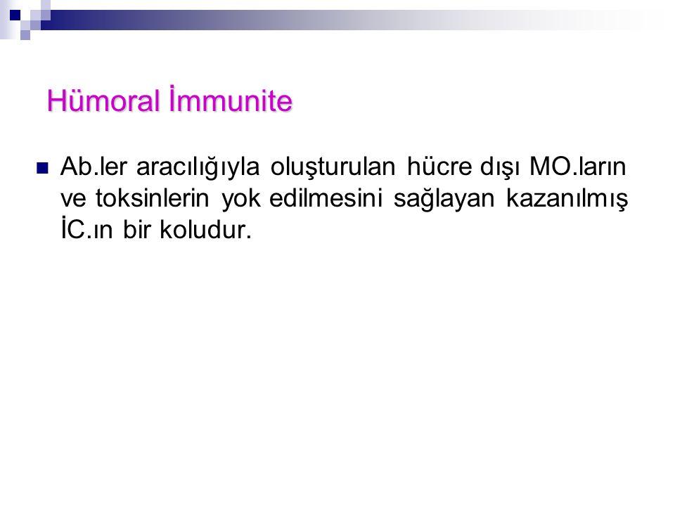 Hümoral İmmunite Ab.ler aracılığıyla oluşturulan hücre dışı MO.ların ve toksinlerin yok edilmesini sağlayan kazanılmış İC.ın bir koludur.