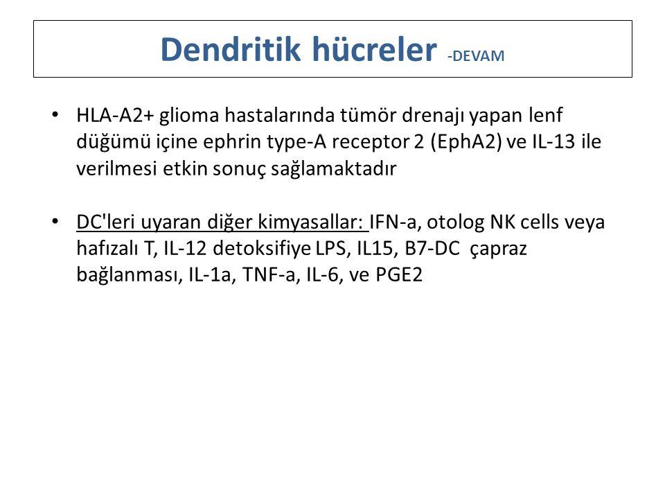 Dendritik hücreler -DEVAM