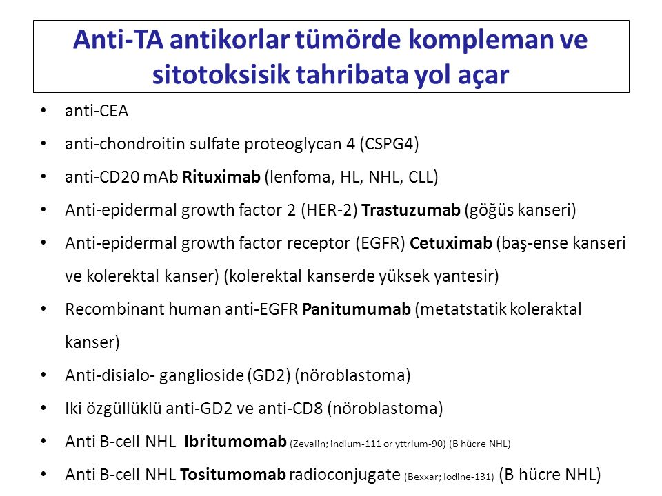 Anti-TA antikorlar tümörde kompleman ve sitotoksisik tahribata yol açar
