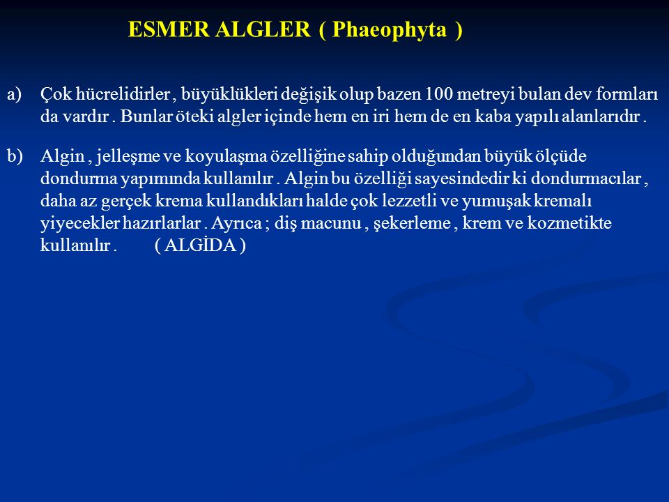 ESMER ALGLER ( Phaeophyta )