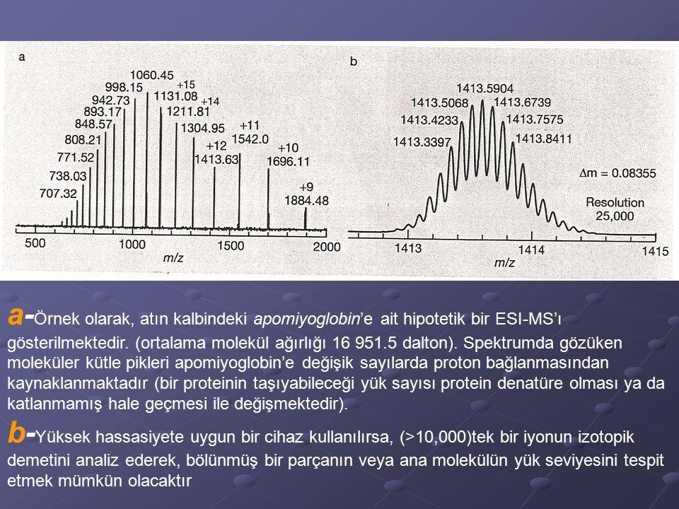 a-Örnek olarak, atın kalbindeki apomiyoglobin'e ait hipotetik bir ESI-MS'ı gösterilmektedir. (ortalama molekül ağırlığı 16 951.5 dalton). Spektrumda gözüken moleküler kütle pikleri apomiyoglobin'e değişik sayılarda proton bağlanmasından kaynaklanmaktadır (bir proteinin taşıyabileceği yük sayısı protein denatüre olması ya da katlanmamış hale geçmesi ile değişmektedir).