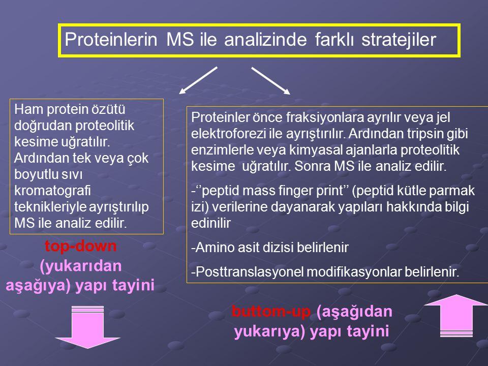 Proteinlerin MS ile analizinde farklı stratejiler