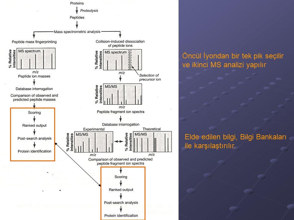 Öncül İyondan bir tek pik seçilir ve ikinci MS analizi yapılır