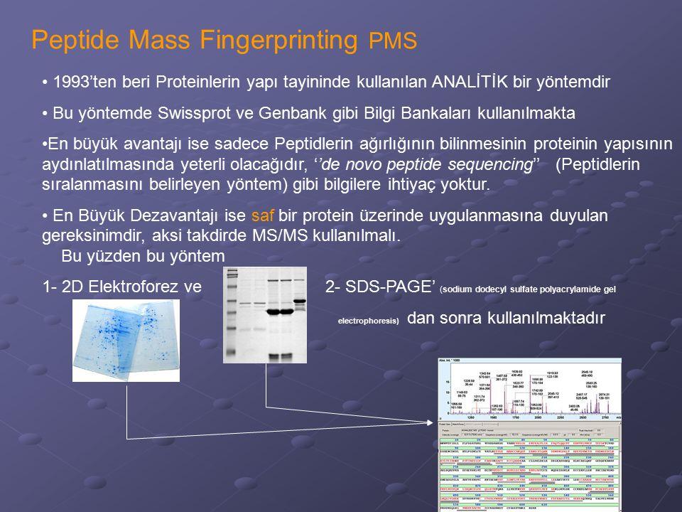 Peptide Mass Fingerprinting PMS