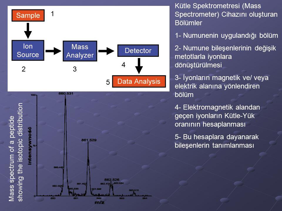 Kütle Spektrometresi (Mass Spectrometer) Cihazını oluşturan Bölümler