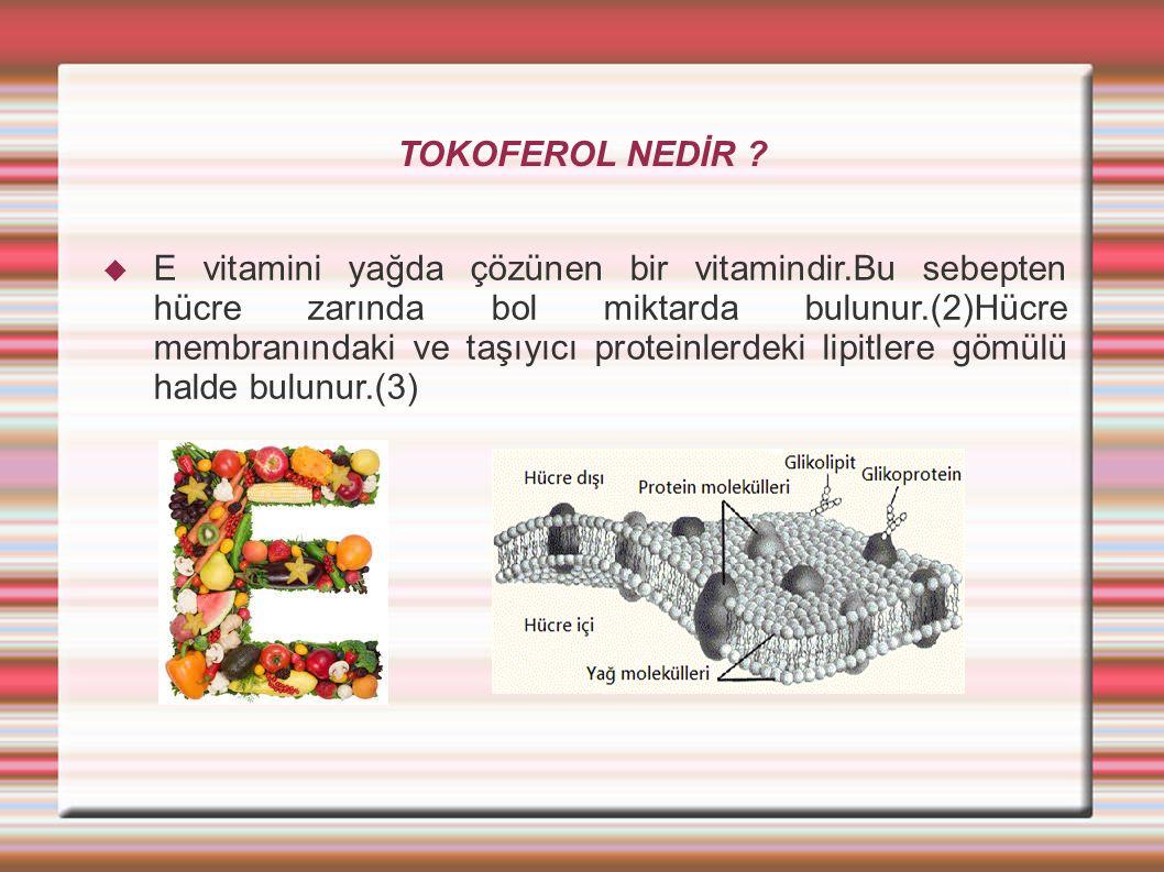 TOKOFEROL NEDİR
