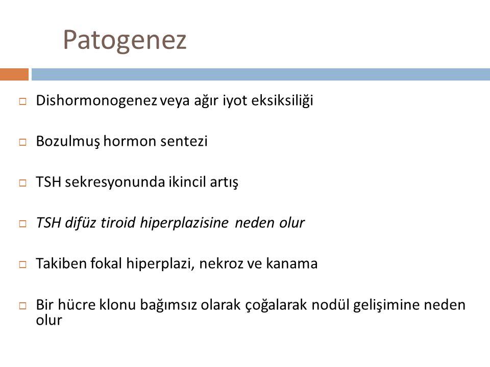 Patogenez Dishormonogenez veya ağır iyot eksiksiliği