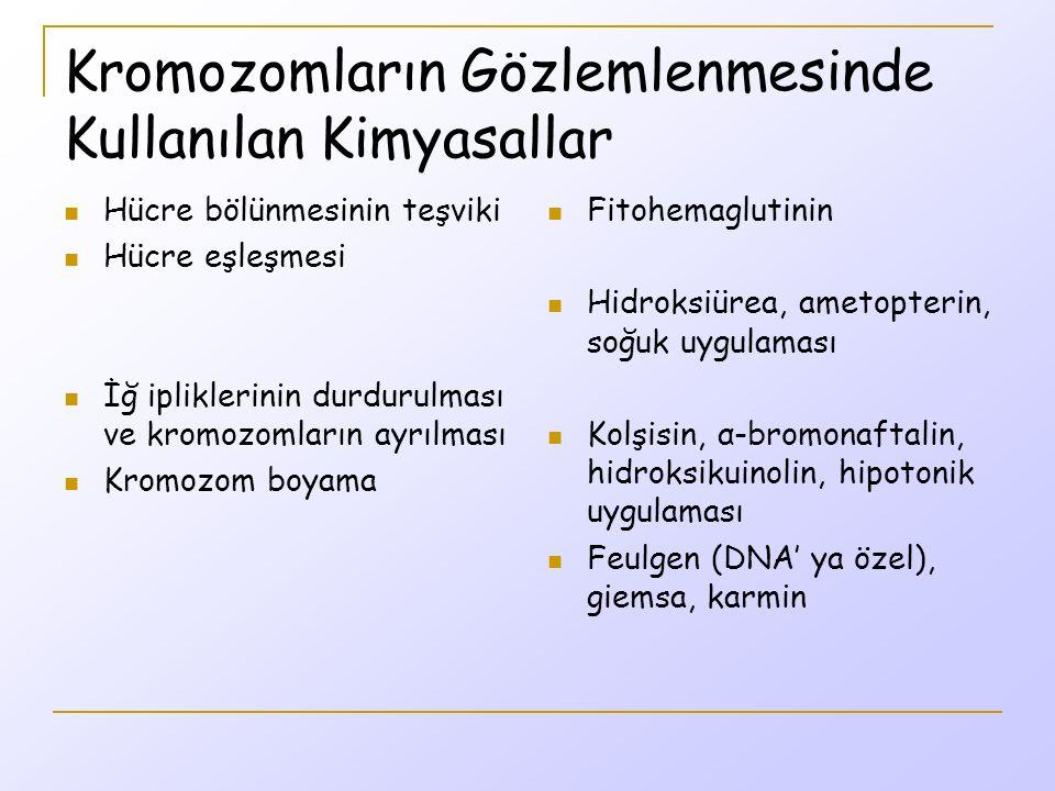 Kromozomların Gözlemlenmesinde Kullanılan Kimyasallar