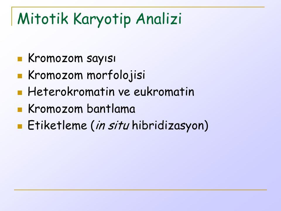 Mitotik Karyotip Analizi