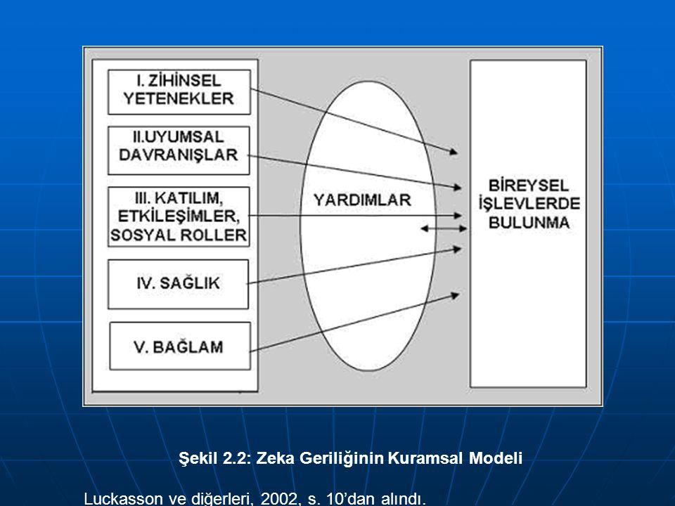Şekil 2.2: Zeka Geriliğinin Kuramsal Modeli