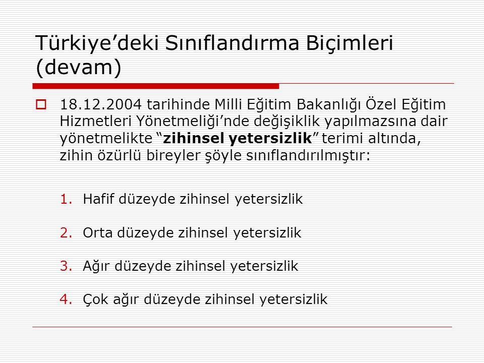 Türkiye'deki Sınıflandırma Biçimleri (devam)