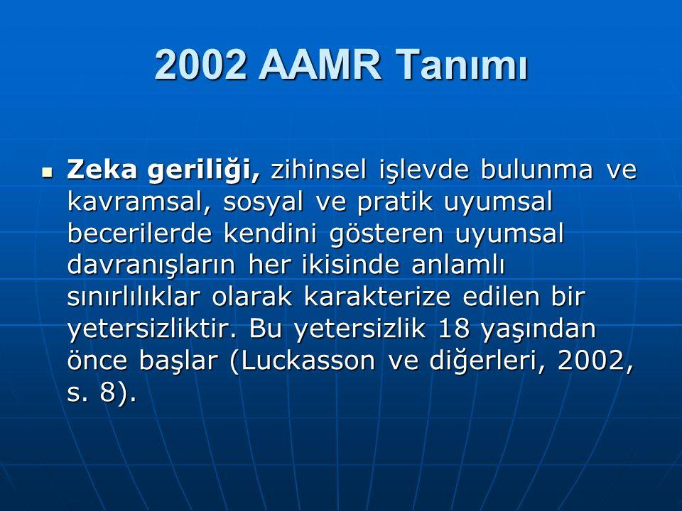2002 AAMR Tanımı