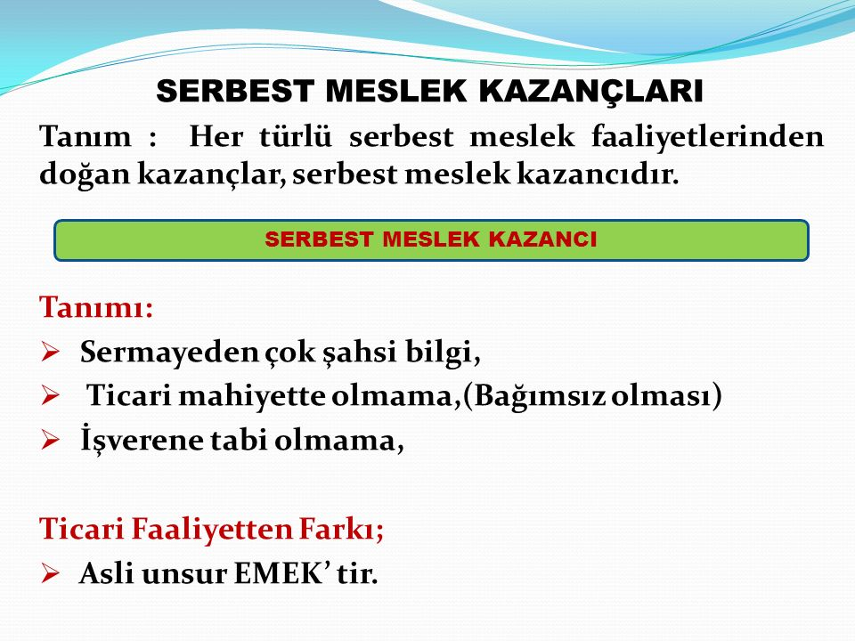 SERBEST MESLEK KAZANÇLARI SERBEST MESLEK KAZANCI