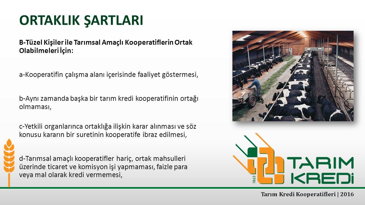 ORTAKLIK ŞARTLARI B-Tüzel Kişiler ile Tarımsal Amaçlı Kooperatiflerin Ortak Olabilmeleri İçin: