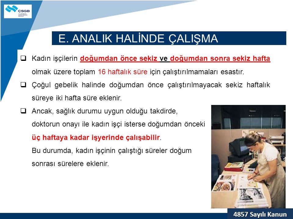 E. ANALIK HALİNDE ÇALIŞMA