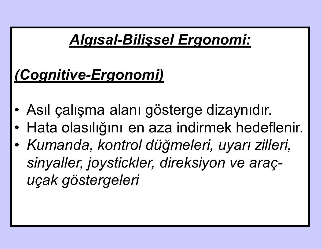 Algısal-Bilişsel Ergonomi: