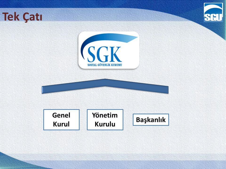 Tek Çatı Genel Kurul Yönetim Kurulu Başkanlık 14