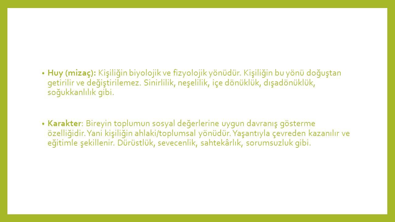 Huy (mizaç): Kişiliğin biyolojik ve fizyolojik yönüdür