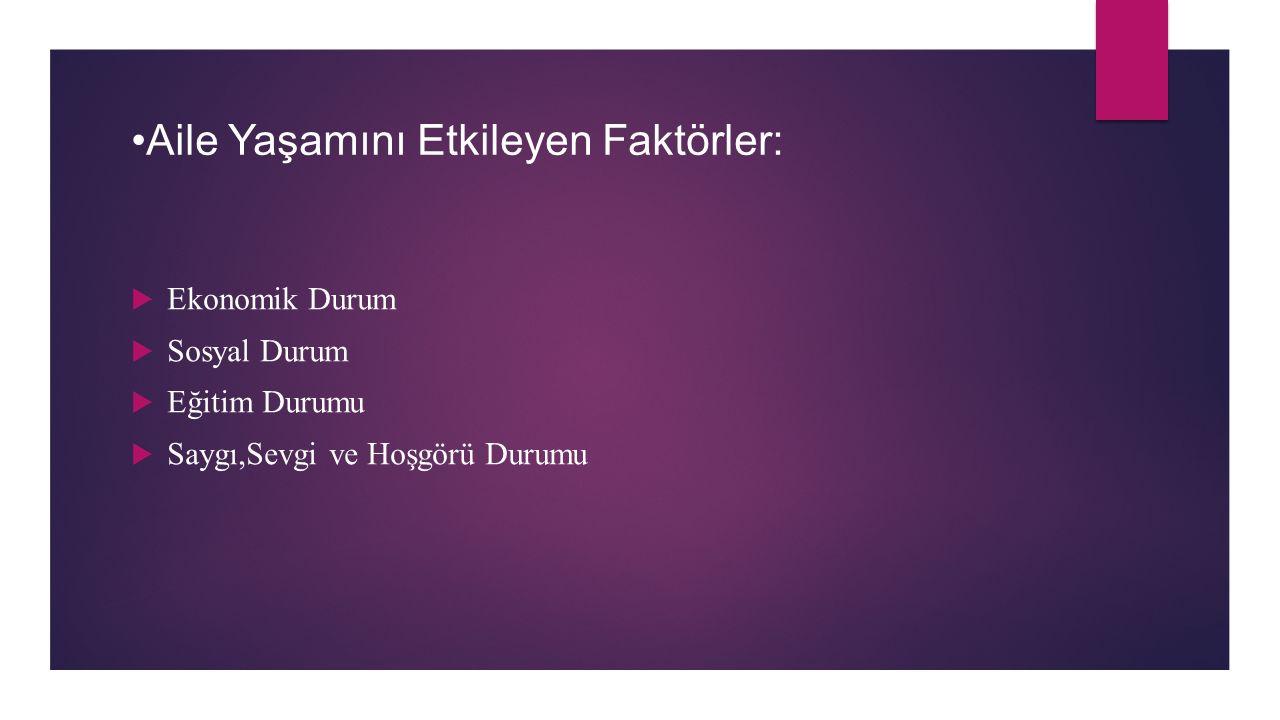 •Aile Yaşamını Etkileyen Faktörler: