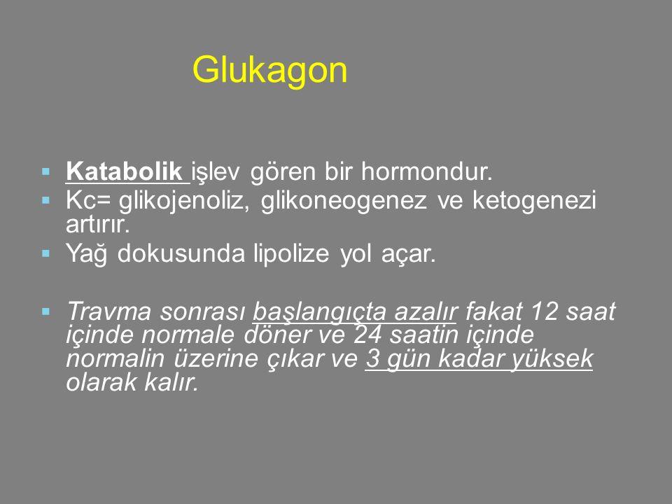 Glukagon Katabolik işlev gören bir hormondur.