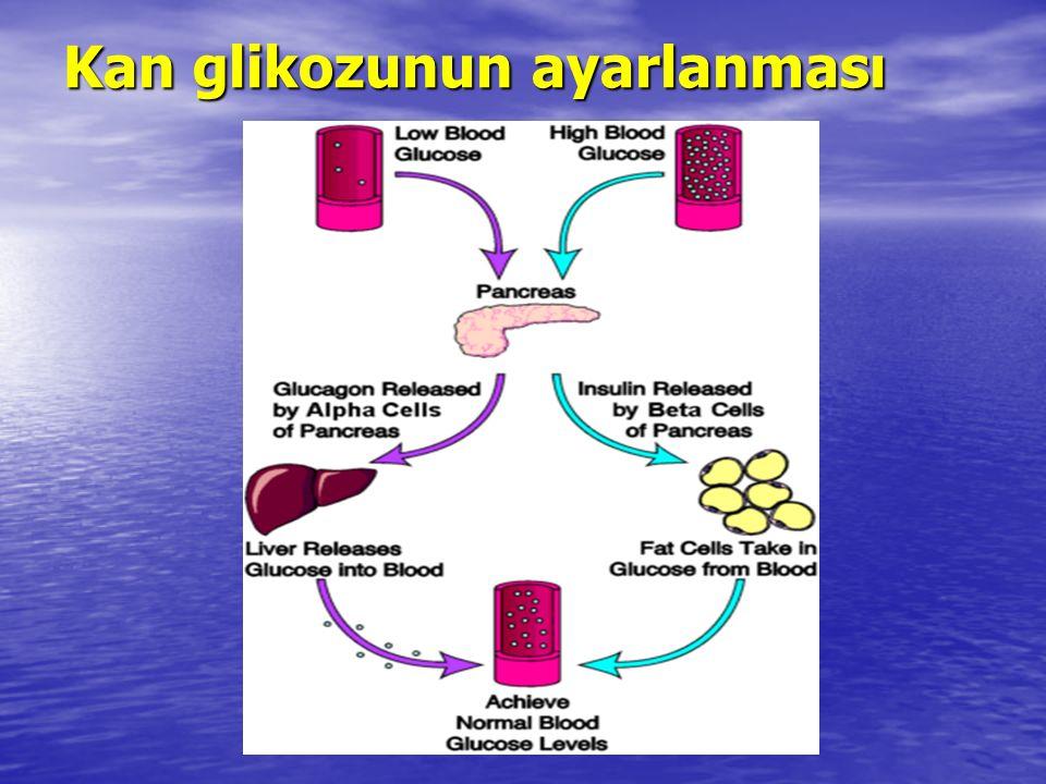 Kan glikozunun ayarlanması