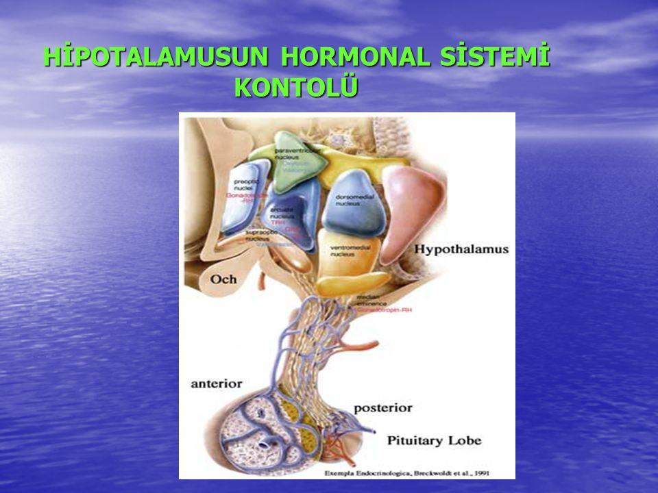 HİPOTALAMUSUN HORMONAL SİSTEMİ KONTOLÜ