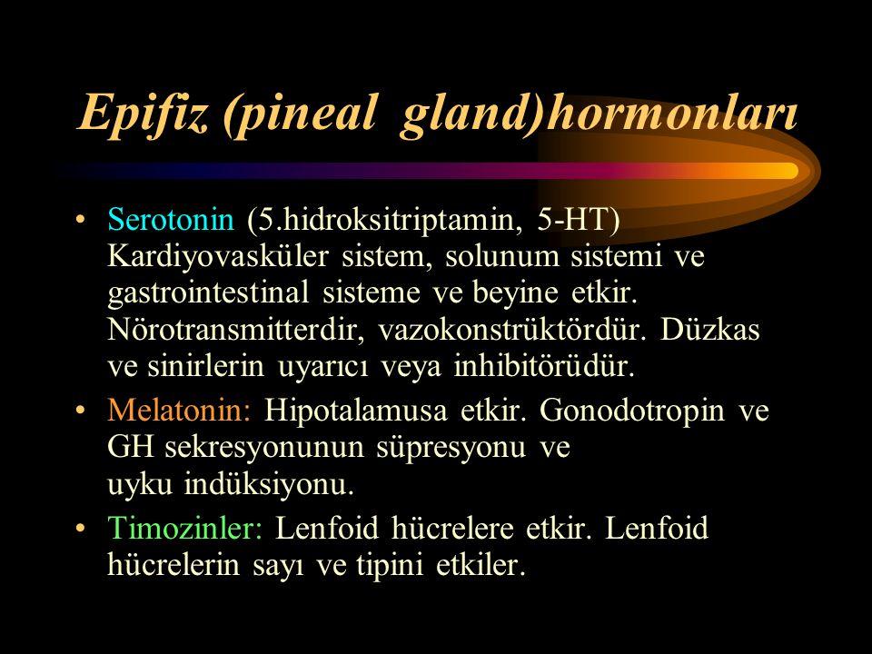 Epifiz (pineal gland)hormonları