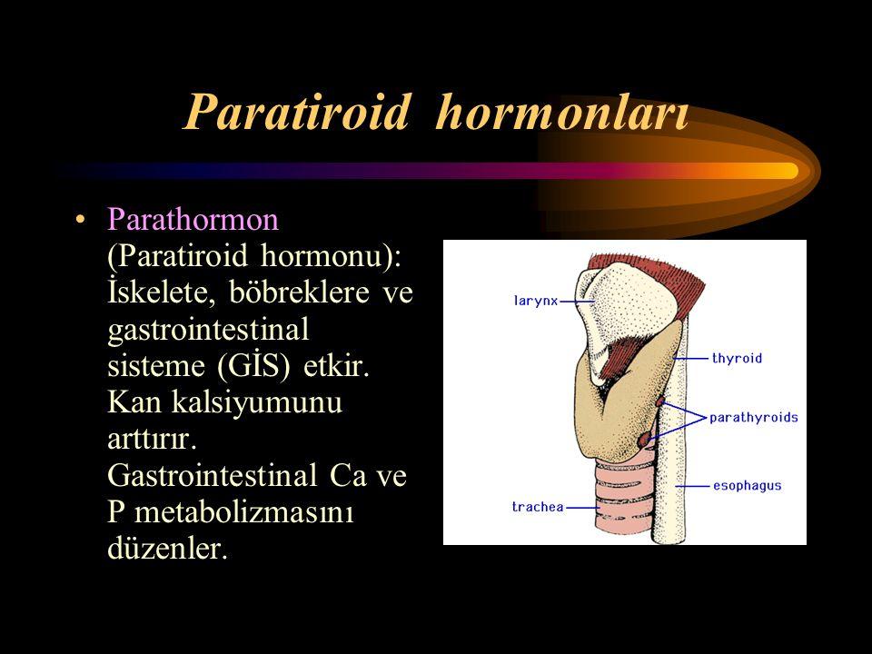Paratiroid hormonları