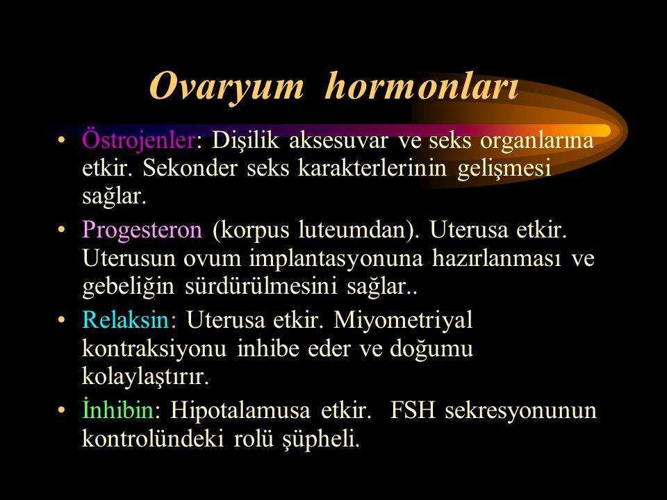 Ovaryum hormonları Östrojenler: Dişilik aksesuvar ve seks organlarına etkir. Sekonder seks karakterlerinin gelişmesi sağlar.
