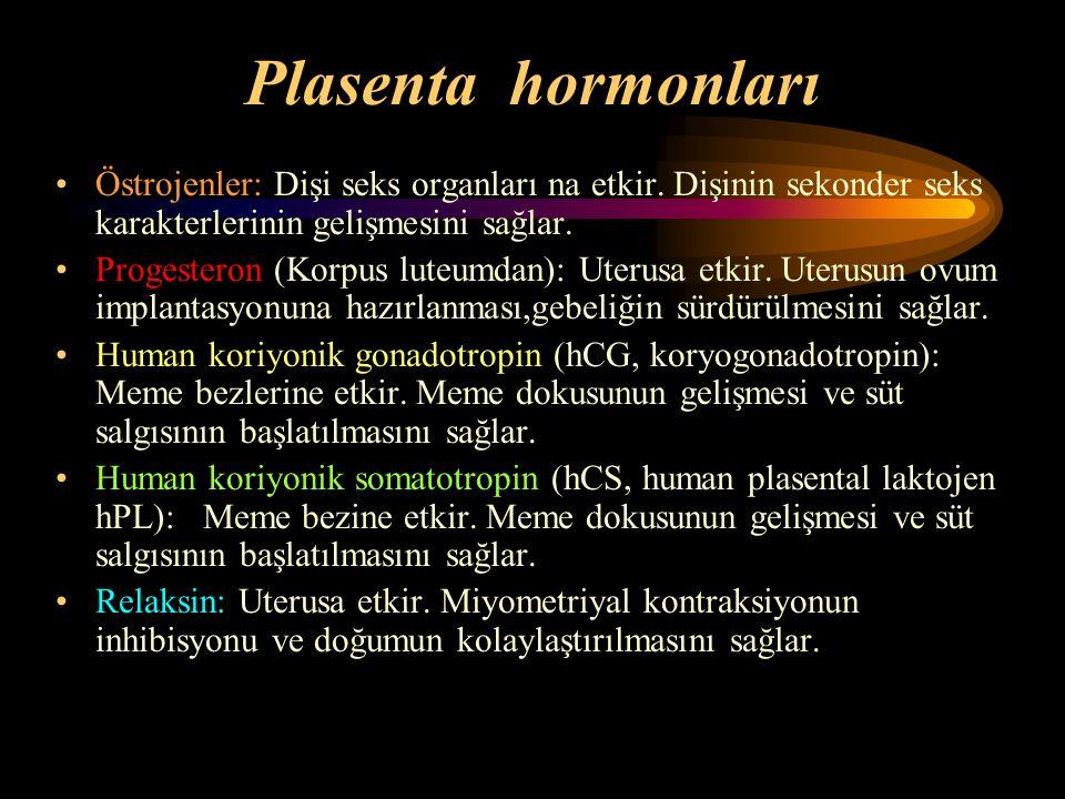 Plasenta hormonları Östrojenler: Dişi seks organları na etkir. Dişinin sekonder seks karakterlerinin gelişmesini sağlar.